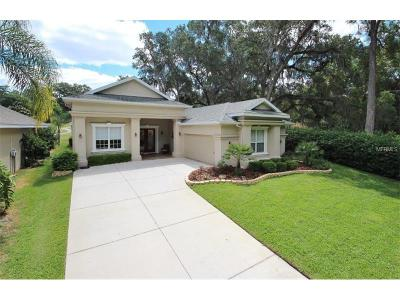 Dade City Single Family Home For Sale: 12236 Sunriver Lane