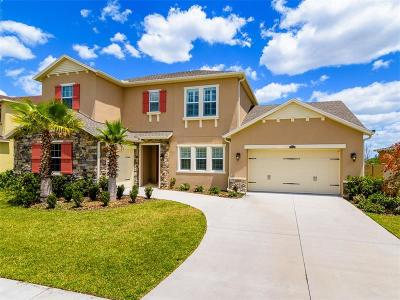Wesley Chapel Single Family Home For Sale: 2390 Gwynhurst Boulevard