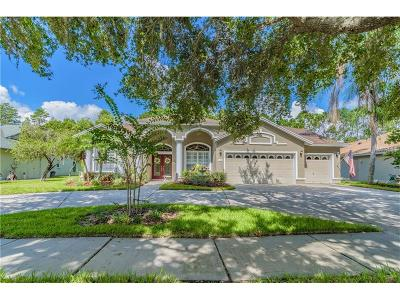 Tampa Single Family Home For Sale: 5605 Glencrest Boulevard