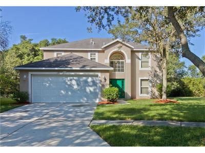 Tampa Single Family Home For Sale: 19216 Wood Sage Drive