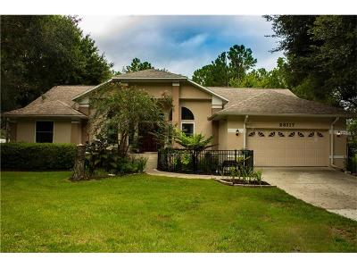 Wesley Chapel Single Family Home For Sale: 28117 Hobbitt Lane