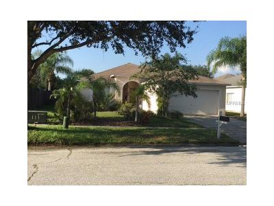 Hernando County, Hillsborough County, Pasco County, Pinellas County Single Family Home For Sale: 12702 Longcrest Drive