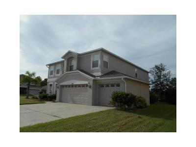 Hernando County, Hillsborough County, Pasco County, Pinellas County Single Family Home For Sale: 13268 Haverhill Drive