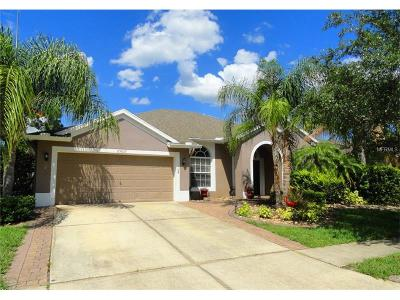Wesley Chapel Single Family Home For Sale: 25607 Risen Star Drive