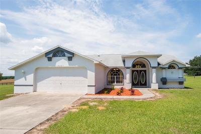 Brooksville Single Family Home For Sale: 14427 Daly Road