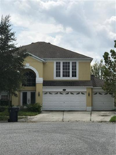 Tampa Single Family Home For Sale: 20102 Natures Hike Way