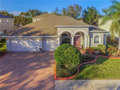 Hernando County, Hillsborough County, Pasco County, Pinellas County Single Family Home For Sale: 20927 Lake Talia Boulevard