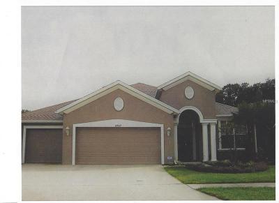 Lutz Single Family Home For Sale: 19709 Courtney Jo Lane