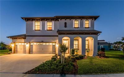 Connerton Single Family Home For Sale: 8239 Swiss Chard Circle