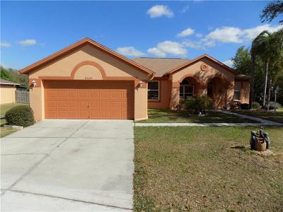Valrico Single Family Home For Sale: 4209 Amber Ridge Lane
