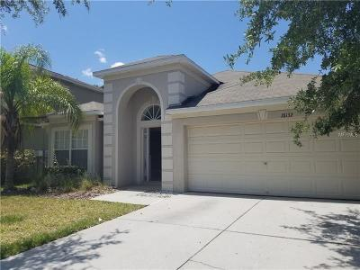 Tampa Single Family Home For Sale: 18132 Sandy Pointe Drive