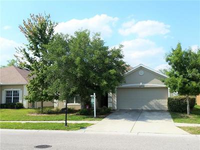Land O Lakes Single Family Home For Sale: 6249 Desert Peace Avenue