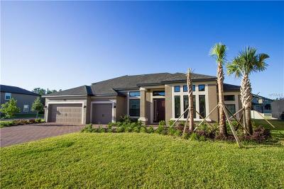 Tampa Single Family Home For Sale: 19416 Whispering Brook Drive