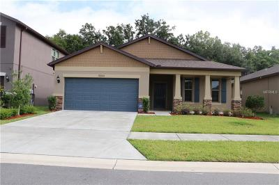 Brooksville Single Family Home For Sale: 15541 Stone House Drive