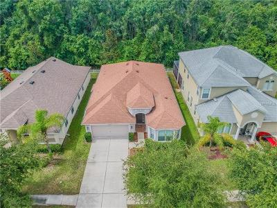 Land O Lakes Single Family Home For Sale: 18330 Cypress Bay Parkway