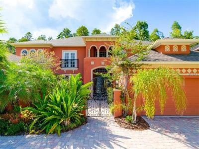 Wesley Chapel Single Family Home For Sale