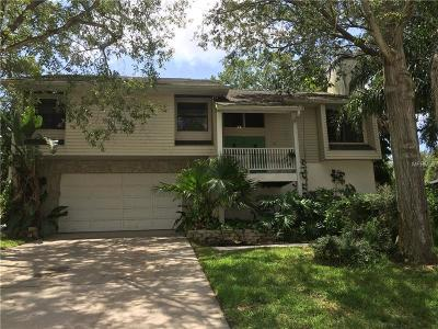 Hernando County, Hillsborough County, Pasco County, Pinellas County Single Family Home For Sale: 56 Gulfwinds Drive
