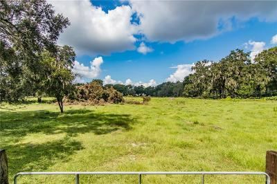 Thonotosassa Residential Lots & Land For Sale: 9952 Tom Folsom Road