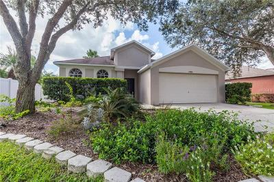 Wesley Chapel Single Family Home For Sale: 27834 Sky Lake Circle