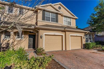 Wesley Chapel Townhouse For Sale: 3912 Silverlake Way