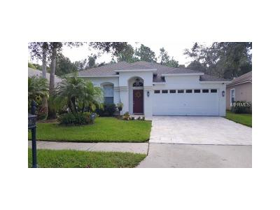 Tampa Single Family Home For Sale: 11803 Derbyshire Drive