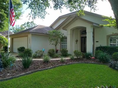 Clermont Single Family Home For Sale: 16603 Rockwell Heights Lane