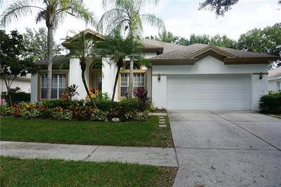 Valrico FL Single Family Home For Sale: $349,900