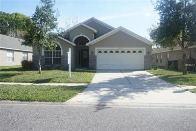 Deltona Single Family Home For Sale: 3082 Wild Pepper Avenue