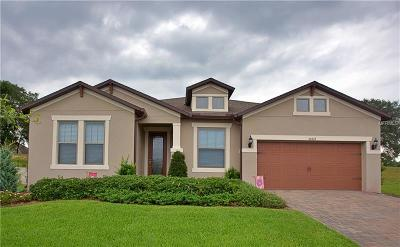 Mount Dora Single Family Home For Sale: 30319 Welara Court