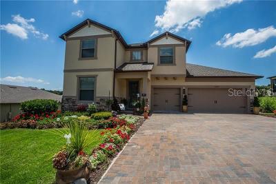 Mount Dora Single Family Home For Sale: 30235 Bretton Loop