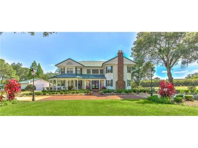 Lakeland Single Family Home For Sale: 1840 Gibsonia Galloway Road