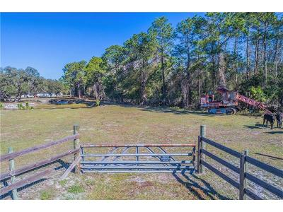 Polk City Residential Lots & Land For Sale: 18150 Commonwealth Avenue