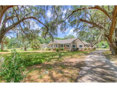 Auburndale Single Family Home For Sale: 2040 Lake Ariana Boulevard