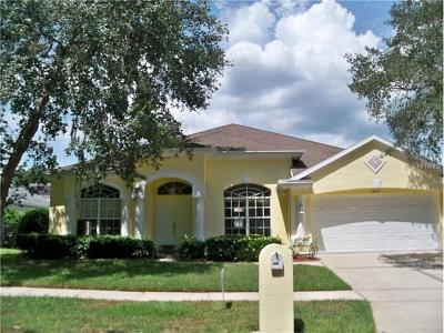 Valrico Single Family Home For Sale: 3609 Warmspring Way