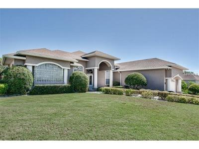 Lakeland Single Family Home For Sale: 7114 Montreal Drive