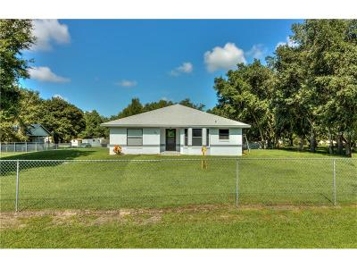 Lakeland Single Family Home For Sale: 5917 Woodale Drive