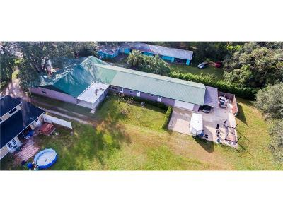Lakeland Single Family Home For Sale: 2219 New Jersey Road