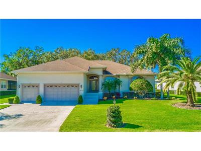 Lakeland Single Family Home For Sale: 6948 Montreal Drive