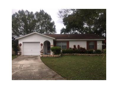 Lakeland Single Family Home For Sale: 1010 Waterview Point
