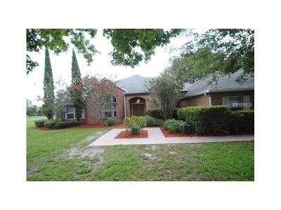 Debary Single Family Home For Sale: 3051 Cat Tail Lane