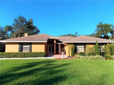 Lakeland Single Family Home For Sale: 509 Century Oak Court