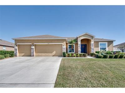 Lakeland Single Family Home For Sale: 7349 Huntington Summit Boulevard