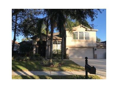Valrico Single Family Home For Sale: 3306 Eastmonte Drive