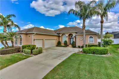 Lakeland Single Family Home For Sale: 6718 High Knoll Drive