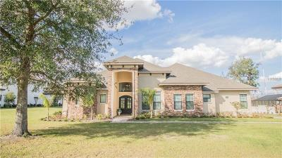 Lakeland Single Family Home For Sale: 7026 Indian Creek Park Drive