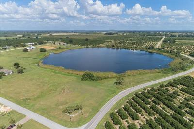 Bartow Residential Lots & Land For Sale: Lake Enderly Boulevard #Lot 31