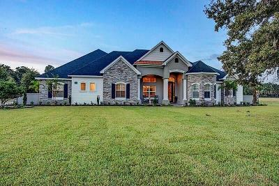 Lakeland Single Family Home For Sale: 7009 Indian Creek Park Drive