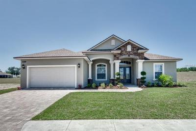 Lakeland Single Family Home For Sale: 3159 Pearly Drive