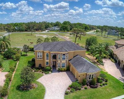 Lakeland Single Family Home For Sale: 6542 Eagle Ridge Way