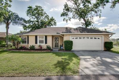 Lakeland Single Family Home For Sale: 6116 Mountain Lake Drive